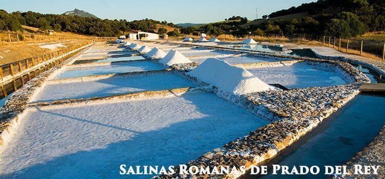 Salt-mines-Prado-del-Rey