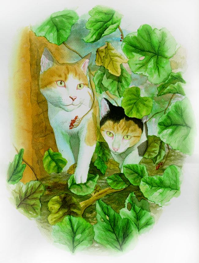 Trabajos de alumnos: Diego y sus gatos.