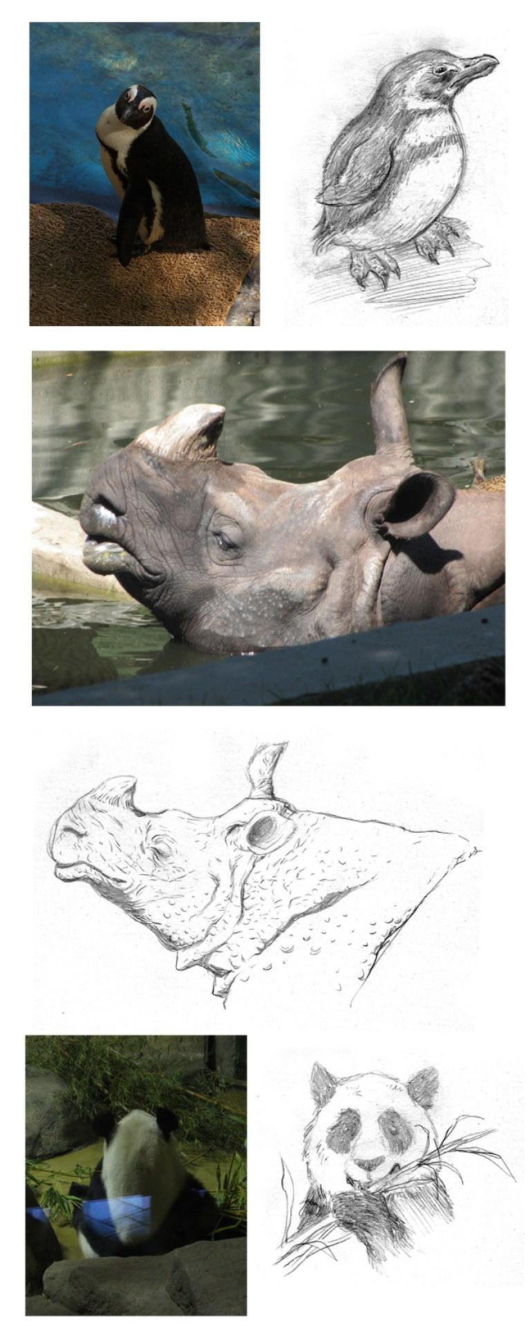 Montaje noticia Zoo