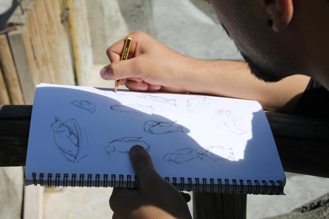 curso-master10-dibujo-ilustracion-animales-excursiones-visita-zoo-madrid2