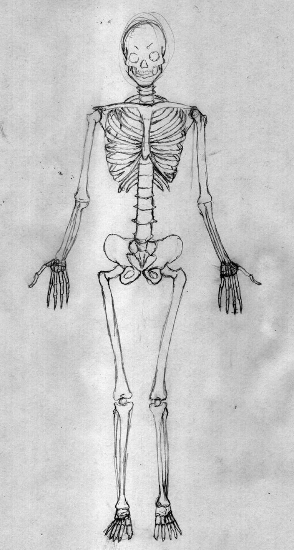 curso-dibujo-comic-aprender-anatomia-artistica-humana-dibujantes-madrid1