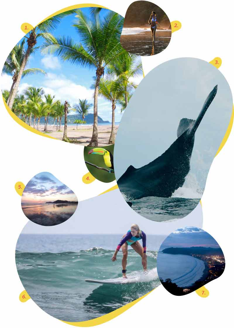 Things to do around our Spanish school location in  Jacó Beach