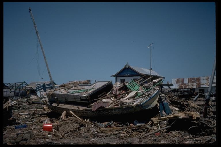 kliping bencana alam Tsunami ini terjadi di Flores Nusa Tenggara Timur (NTT)