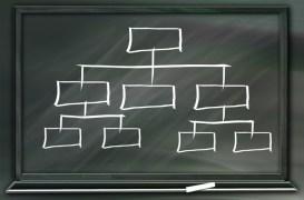 Fungsi dan Peran Organisasi