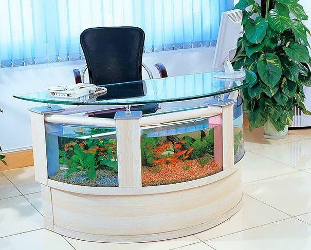 aquarium sebagai stress killer