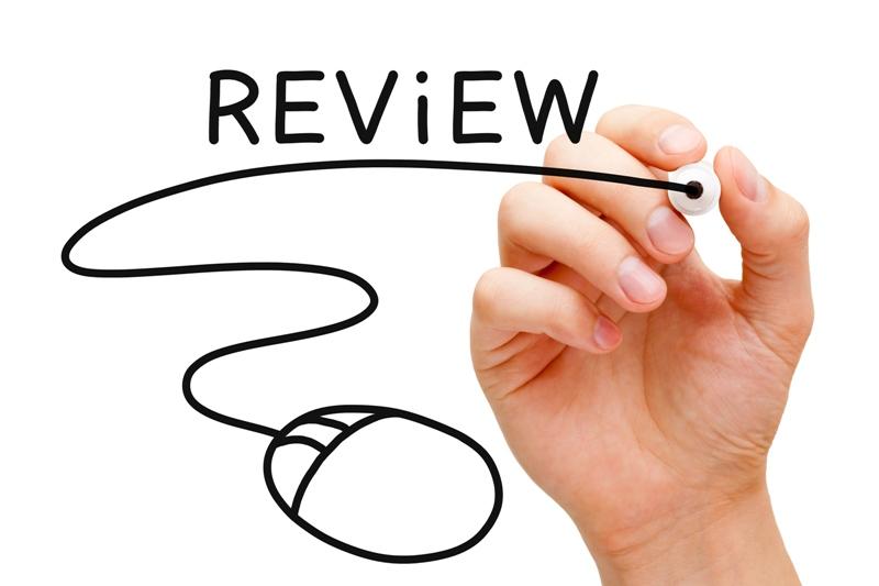 jasa review bisnis