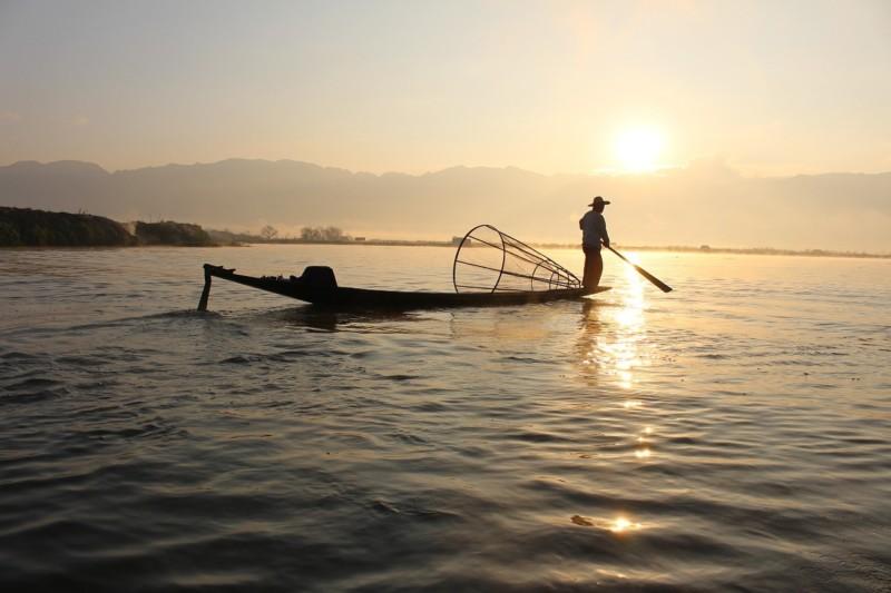 prospek kerja jurusan perikanan yang menjanjikan