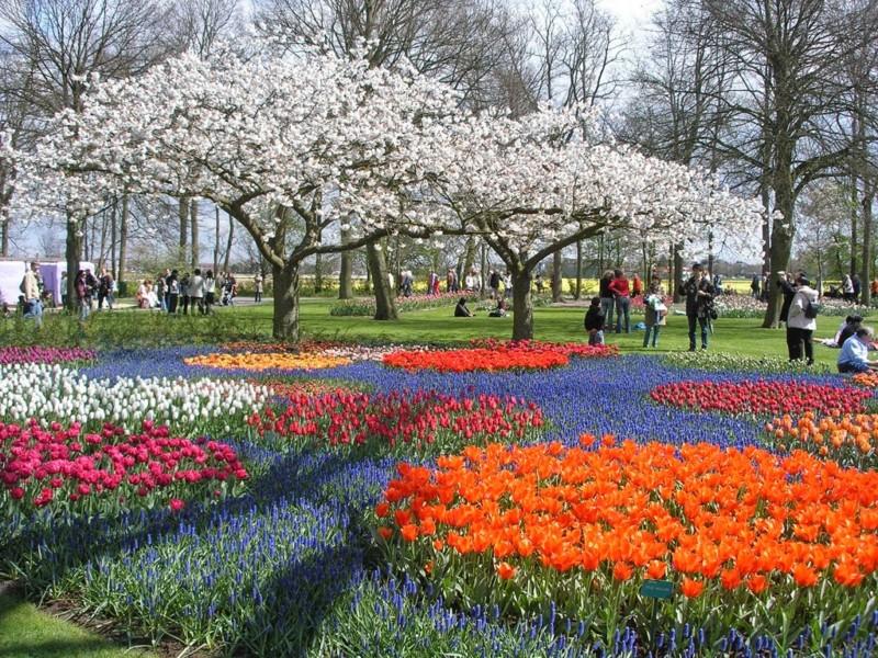 Berlabuh ke 10 Universitas Terbaik di Belanda