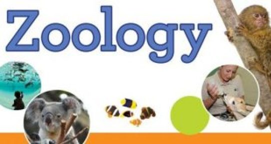 what colleges have good zoology programs