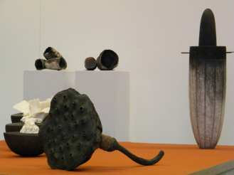 keramiek-atelier-temse-marc-verbruggen-expo-keramiek-dko-natuur-studie-vormstudie-opbouwen-techniek-academie-1
