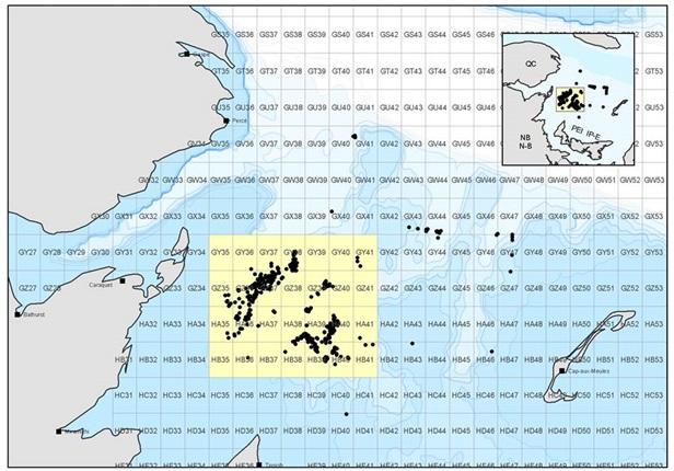 La superficie de la zone de fermeture statique de 14 000 km carrés dans le coeur de la zone de pêche de crabe des neiges. Elle entrera en vigueur au plus tard le 28 avril. - Image gracieuseté: MPO