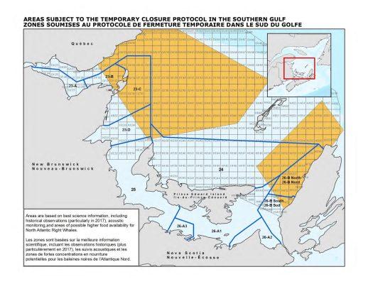 La zone de fermeture dynamique est établie selon des suivis acoustiques et l'observation de forte concentration de nourriture de baleine noire. Elles sont déclenchées quand une baleine est observée dans l'espace en question. -Gracieuseté