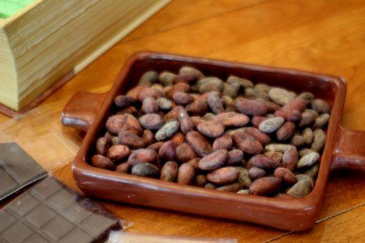 Selon sa provenance et la saison, chaque fève donnera un goût particulier au chocolat. - Acadie Nouvelle: Simon Delattre