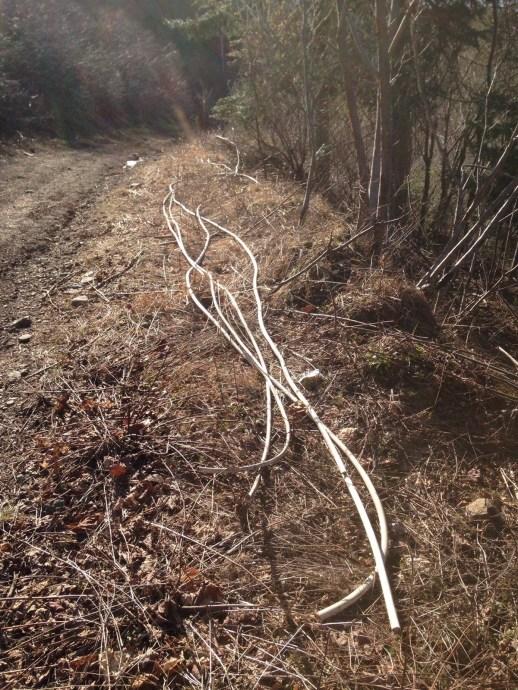 Des fils électriques provenant du site de l'ancienne centrale thermique ont été dépouillés de leur cuivre puis jetés dans la nature. - Gracieuseté