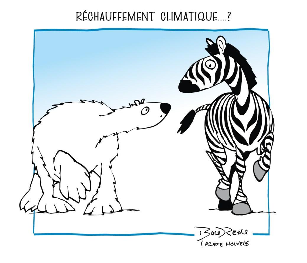 Caricature, 7 juin 2019