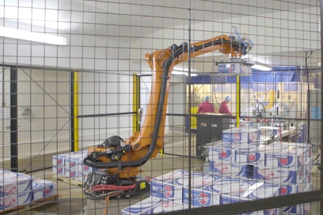 Cube Automation propose aux transformateurs du secteur des pêches une solution de palettisation robotisée. - Gracieuseté
