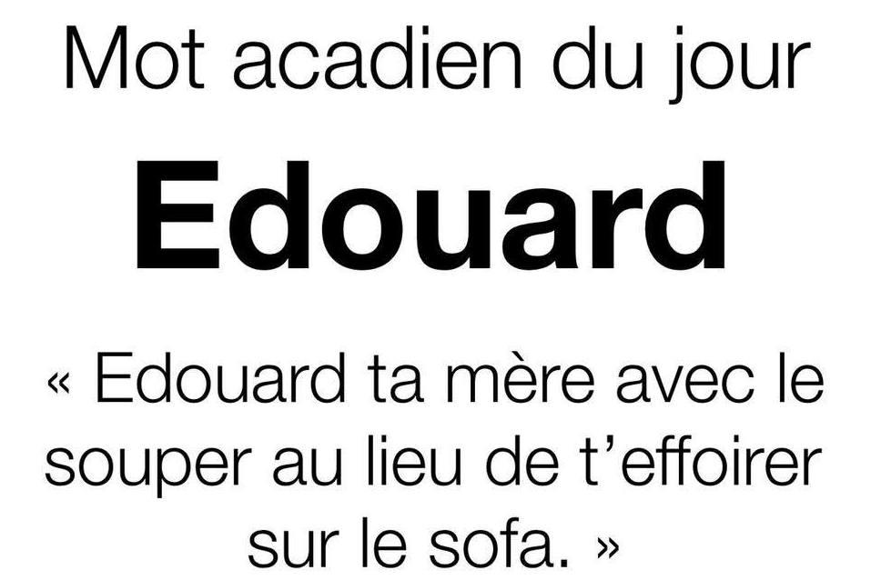 Maxime Doucet compare la page satirique à un outil culturel qui permet de figer les expressions acadiennes dans le temps - Gracieuseté: Niaiseries acadiennes