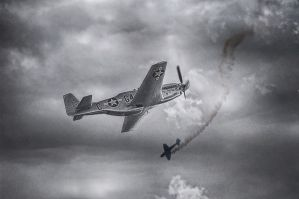 P-51 Mustang - Ricard Mocholí