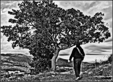 Sin título - Enrique Serranovalverde