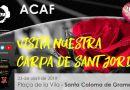 carpa Sant Jordi 2019