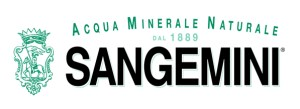 Logo_SanGemini