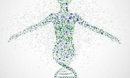 Proteine e agli Aminoacidi. Che ruolo hanno durante una dieta?