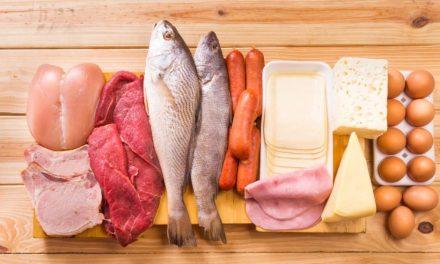 Breve Guida alle Proteine e agli Amminoacidi durante una dieta