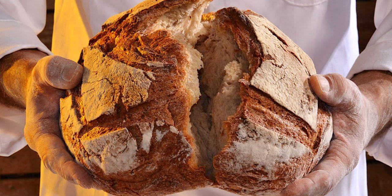 Il pane artigianale fa bene, meglio di quello industriale
