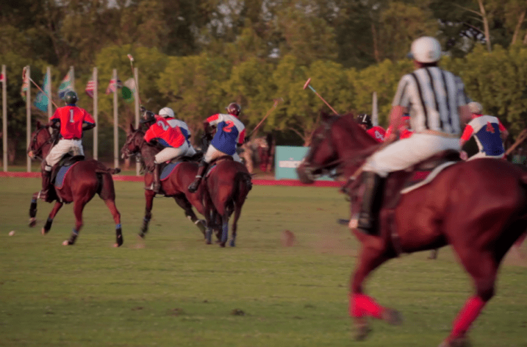 Access Bank Unicef Charity Shield Polo