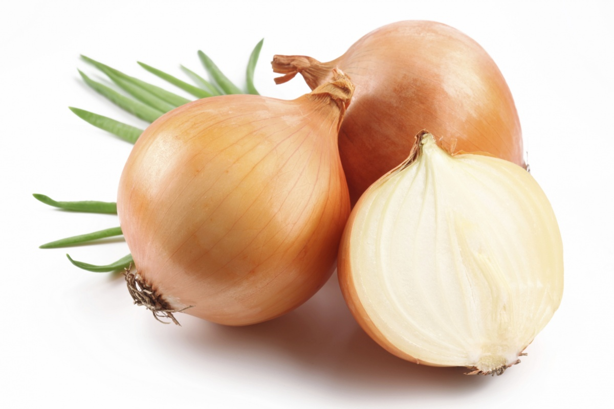 Fresh bulbs of onion