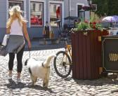 Multimodaalne Tartu: rattaringlus, kergteede ideekorje ja hübriidide erikohtlemise lõpp