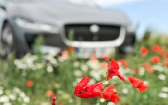 kliimaseade auto