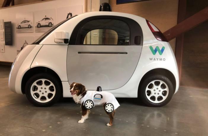 robotautod