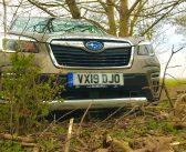 Uus Subaru Forester e-Boxer – metsamees, <em>yah, yah</em>, metsamees!