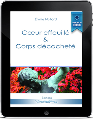 cover_pocket_ebook_cecd