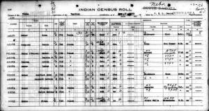Ponca Census Image