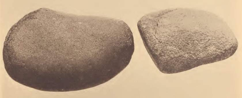 Stones used by the Pamunkey for pounding clay and shells for pottery making