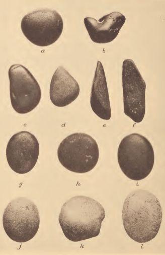 Pamunkey, Mattaponi and Catawba pottery smoothing stones