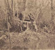 Pamunkey hunter rebaiting a deadfall