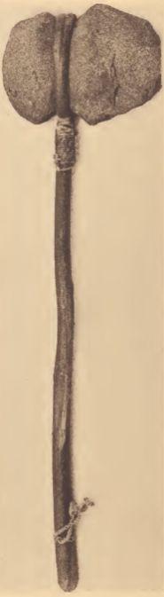 Mattaponi hafted stone tomahawk