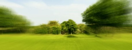 Image of tunnel vision of a park