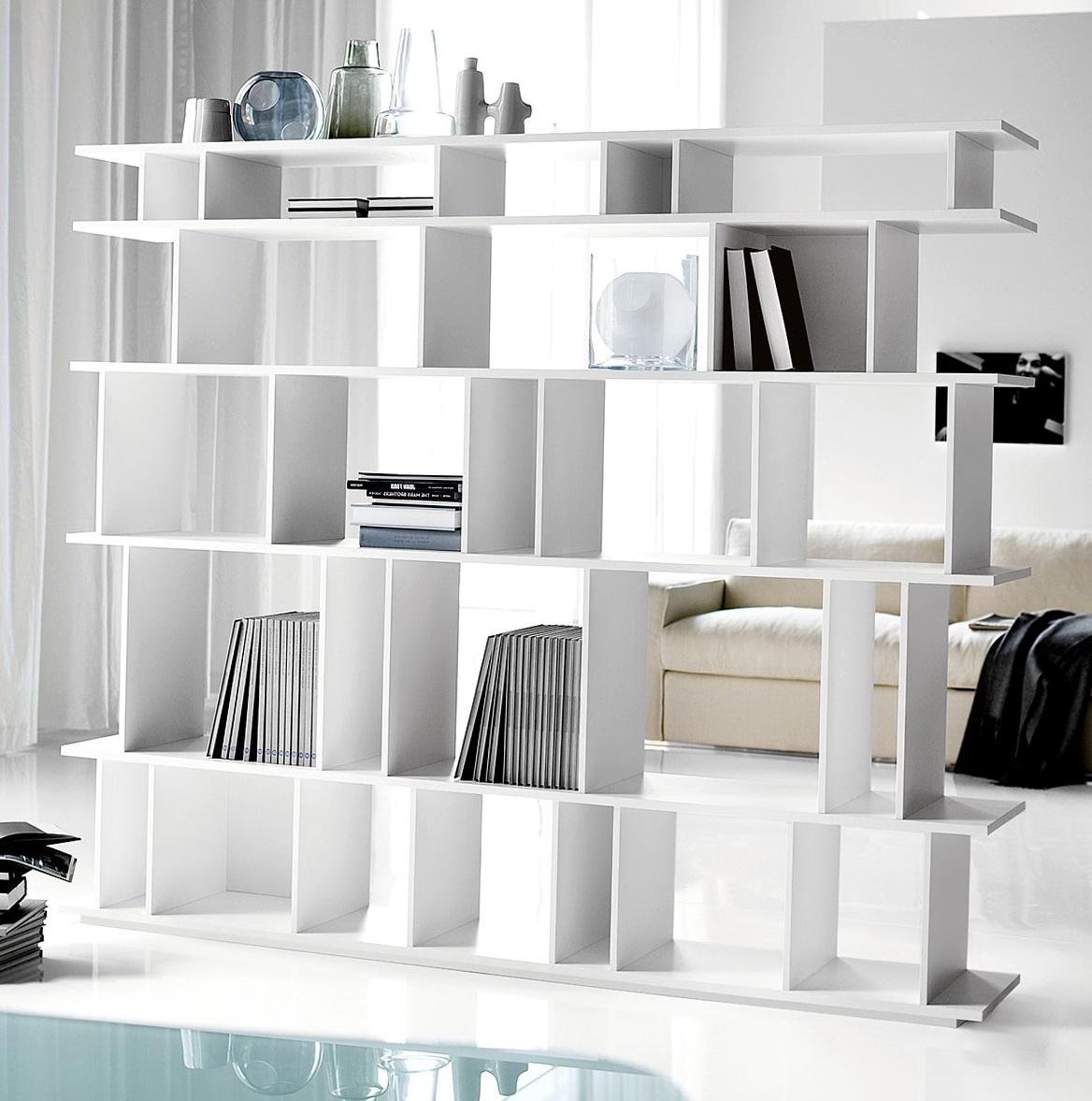 Bookshelf Room Divider Diy Home Design Ideas