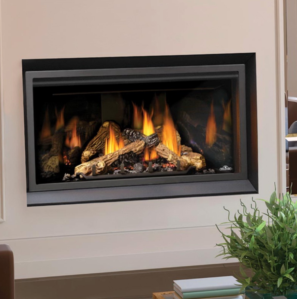 Napoleon Gas Fireplaces Direct Vent