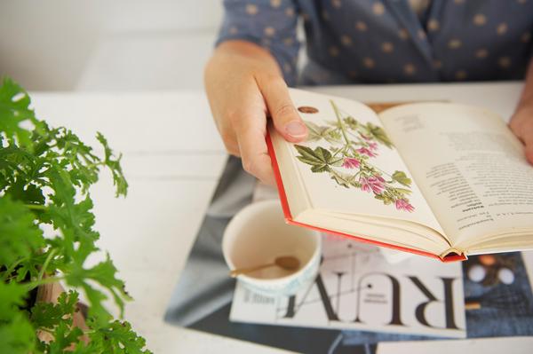 Sandra - Accessorize your Home - Spaghetti fotografie - Botanical