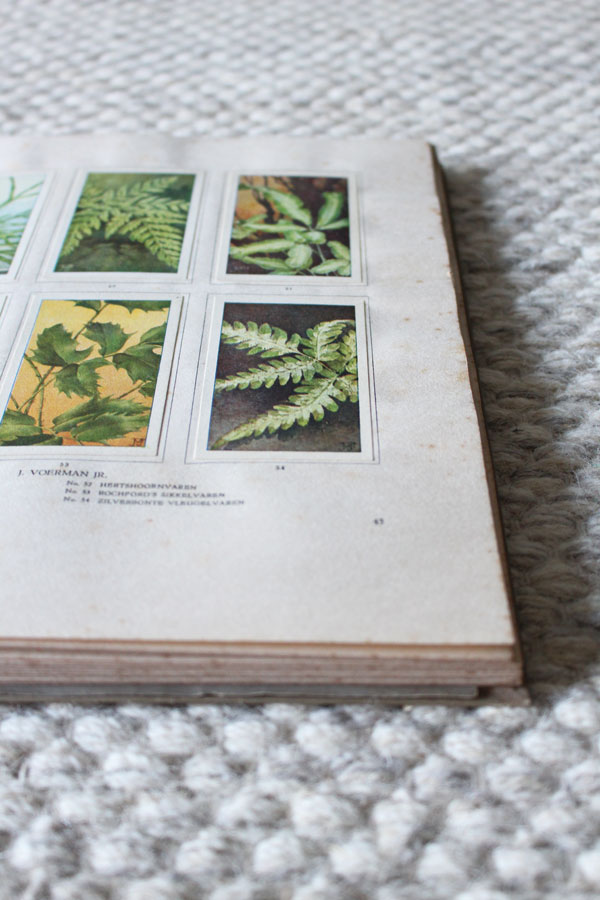 Vintage plakboek op naturel wollen vloerkleed - via Accessorize your Home