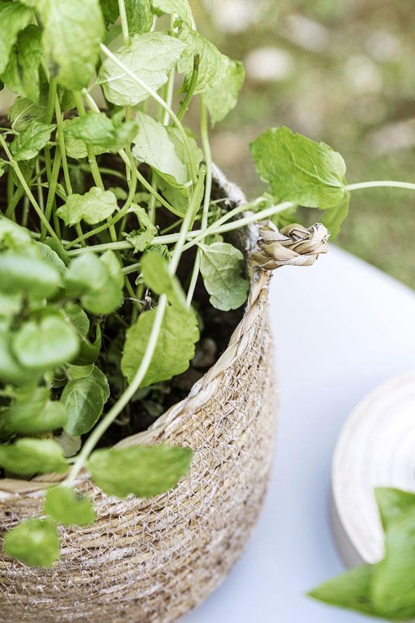 Close up foto van een klein naturel mandje gevuld met frisgroene kruiden.