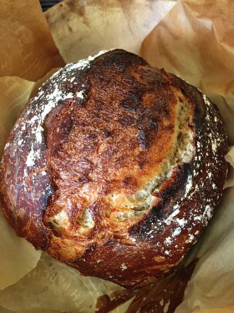 Spelt Flour No Knead Bread | Accidental Artisan