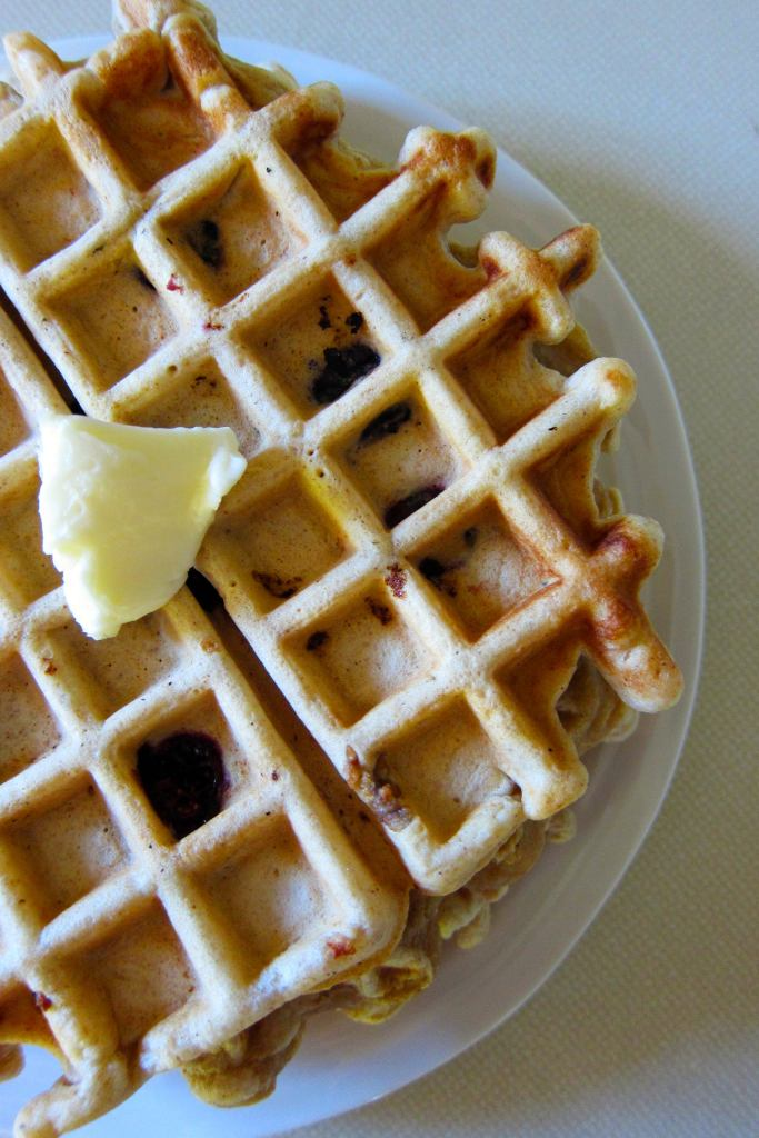 Blueberry Whole Spelt Waffles | Accidental Artisan