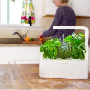 Smart Herb Garden - Idee Regalo Natale 2013 per Foodies - AccidiosaV