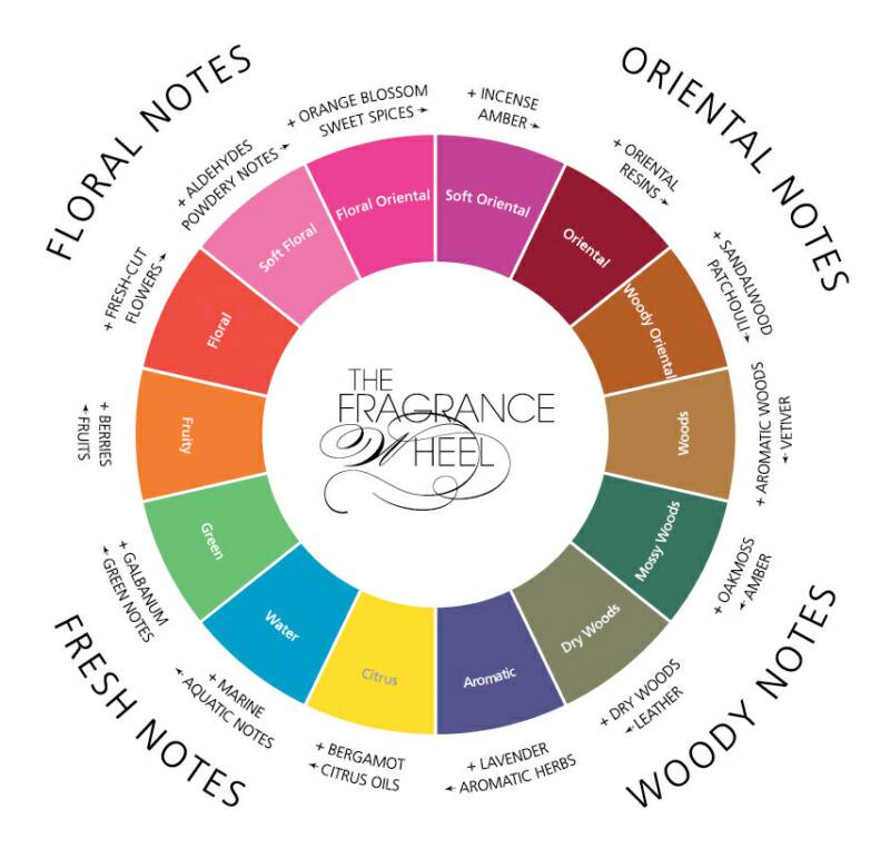 fragrance wheel - ruota delle famiglie olfattive - floral oriental woody fresh
